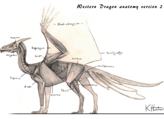 Western dragon anatomy lateral view