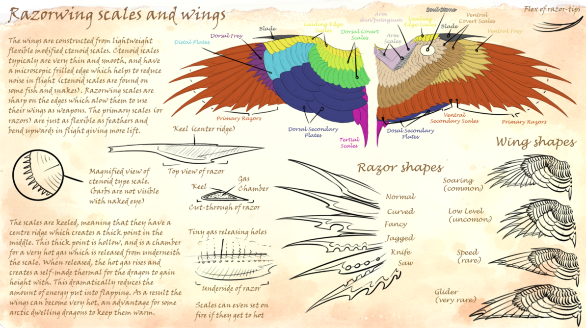 Razorwing scales and wings diagram