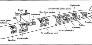 Submarine anatomy