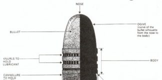 Bullet structure anatomy