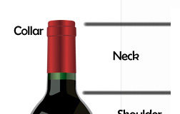 Wine bottles anatomy