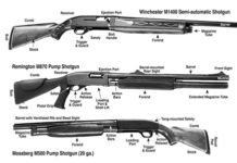Shotgun different types and anatomy