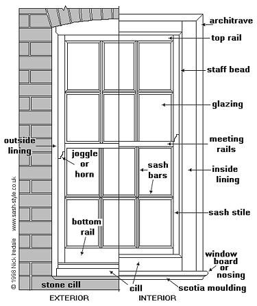 Window anatomy lateral view