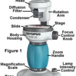 Digital Microscope structure