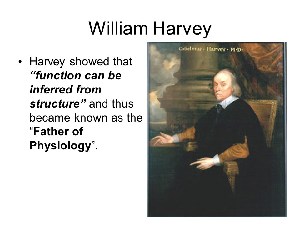 William Harvey - father of physiology