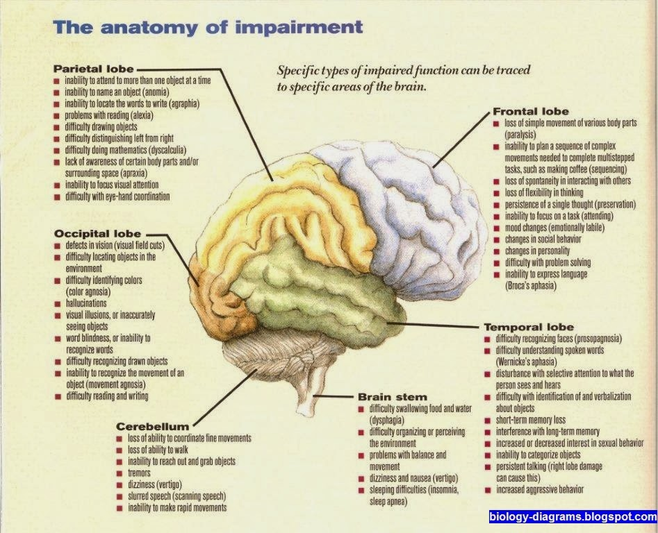 The anatomy of impairment