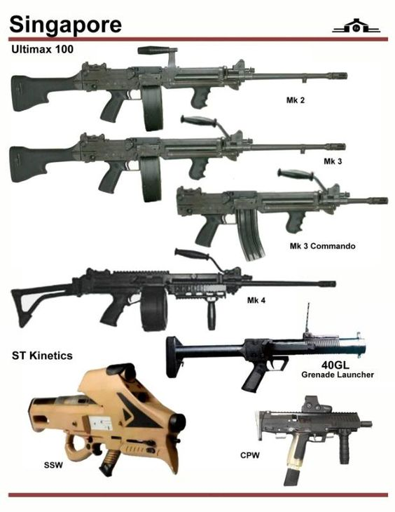 Singapore different types of guns
