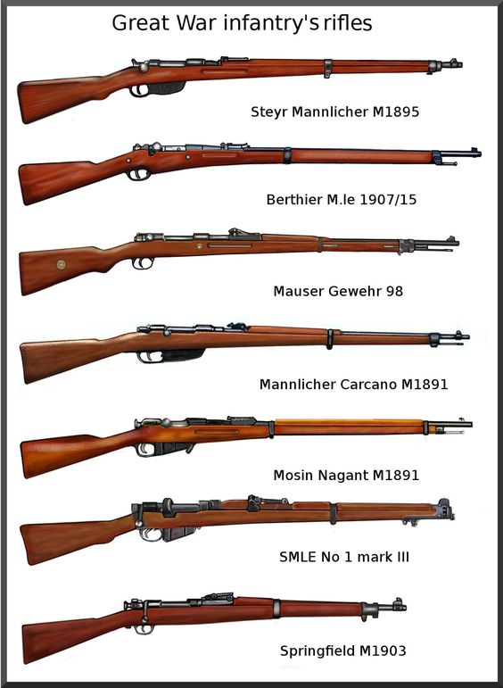 Great war infantry's rifles anatomy