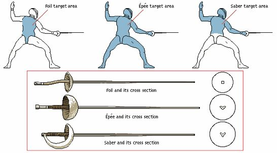 Fencing Swords Target Area And Cross Section Diagram