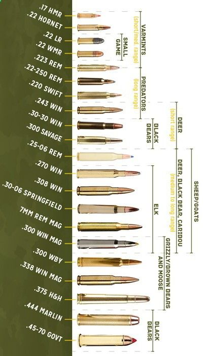 Bullets Different Types
