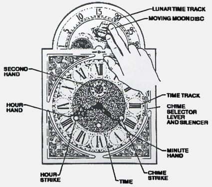 National Clock Structure