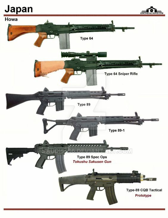 Japan Different Types Of Rifles