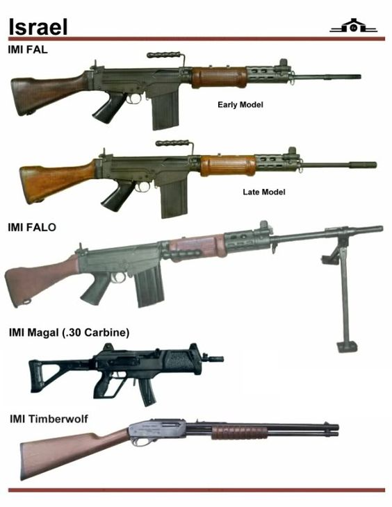 Israel Rifle Types