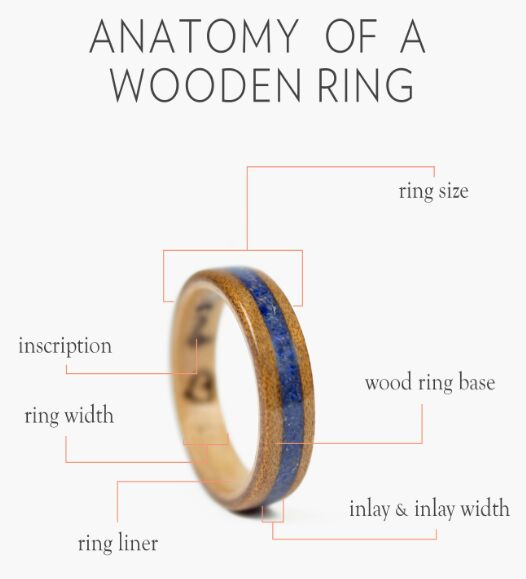 Wooden Ring Anatomy