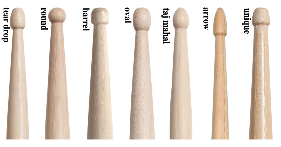 Drumstick Anatomy And Different Types