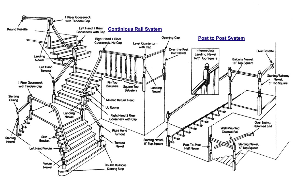 Staircase Anatomical Structure
