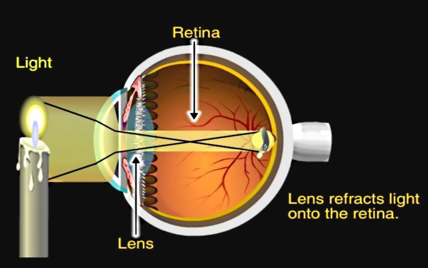 Lens And Retina In Eye