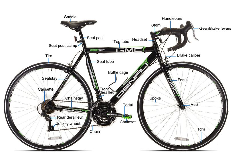Racing Bicycle Structure Anatomy