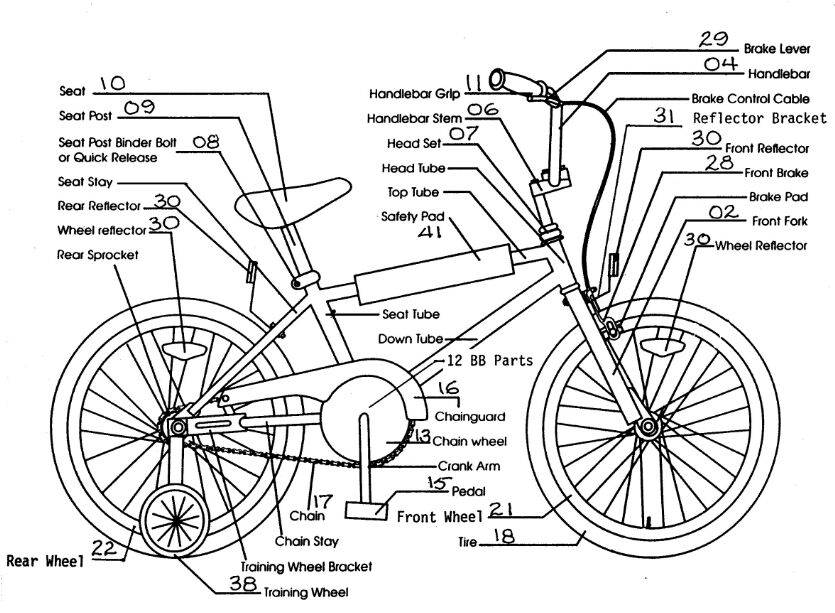 Girl Bike Anatomy