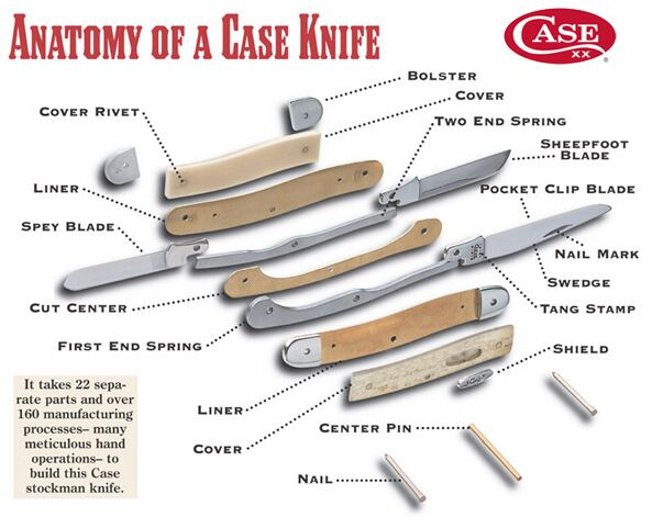 Case Knife Anatomy