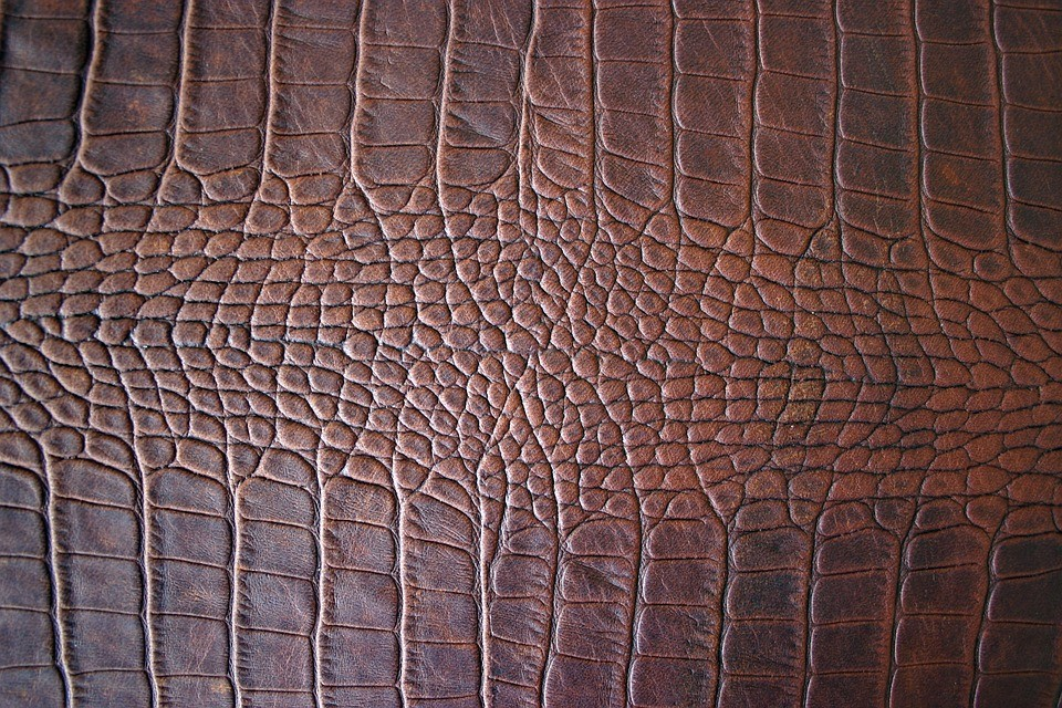 Brown Leather Structure
