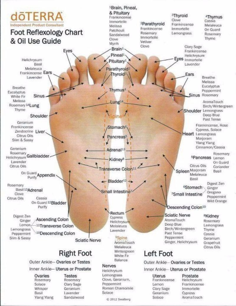 Foot Reflexology Chart And Oil Use Guide