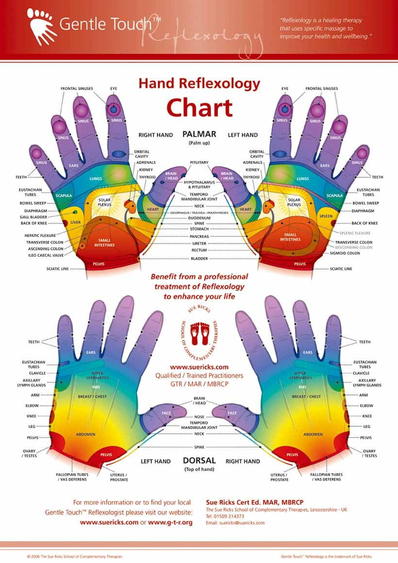 Hand Reflexology Chart Diagram