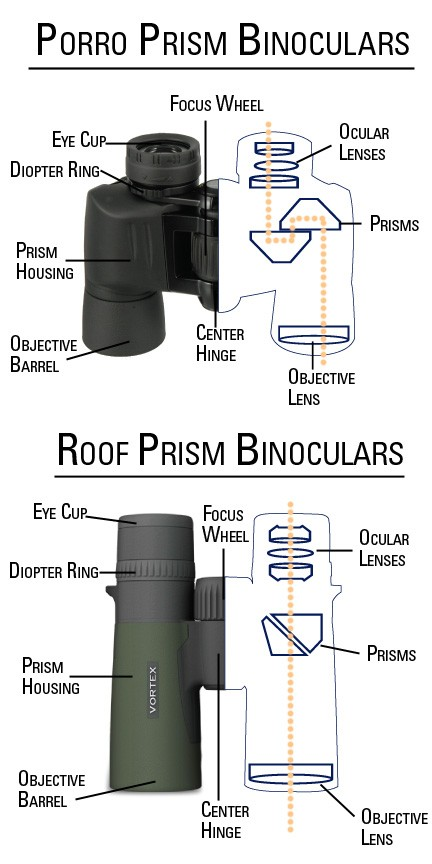 Porro Prism Binoculars And Roof Prism Binoculars Structure Diagram