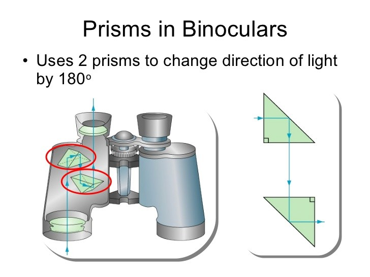 Prisms In Binoculars Diagram