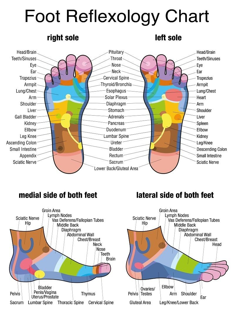 Foot Reflexology Inferior View And Lateral View Chart