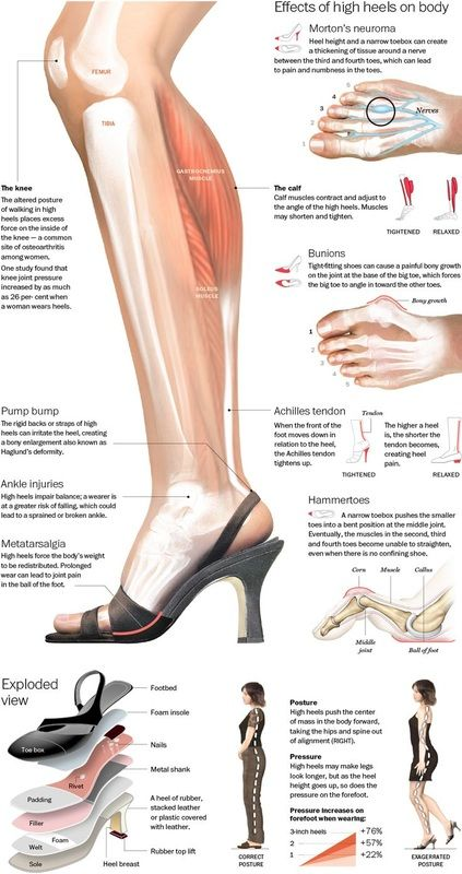 Effects Of High Heel On Human Body