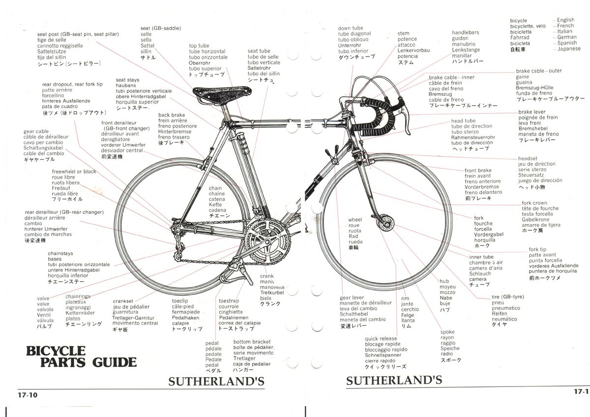 Bicycle Parts Guide Diagram