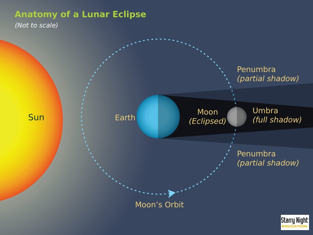 Anatomy Of A Lunar Eclipse (not To Scale)