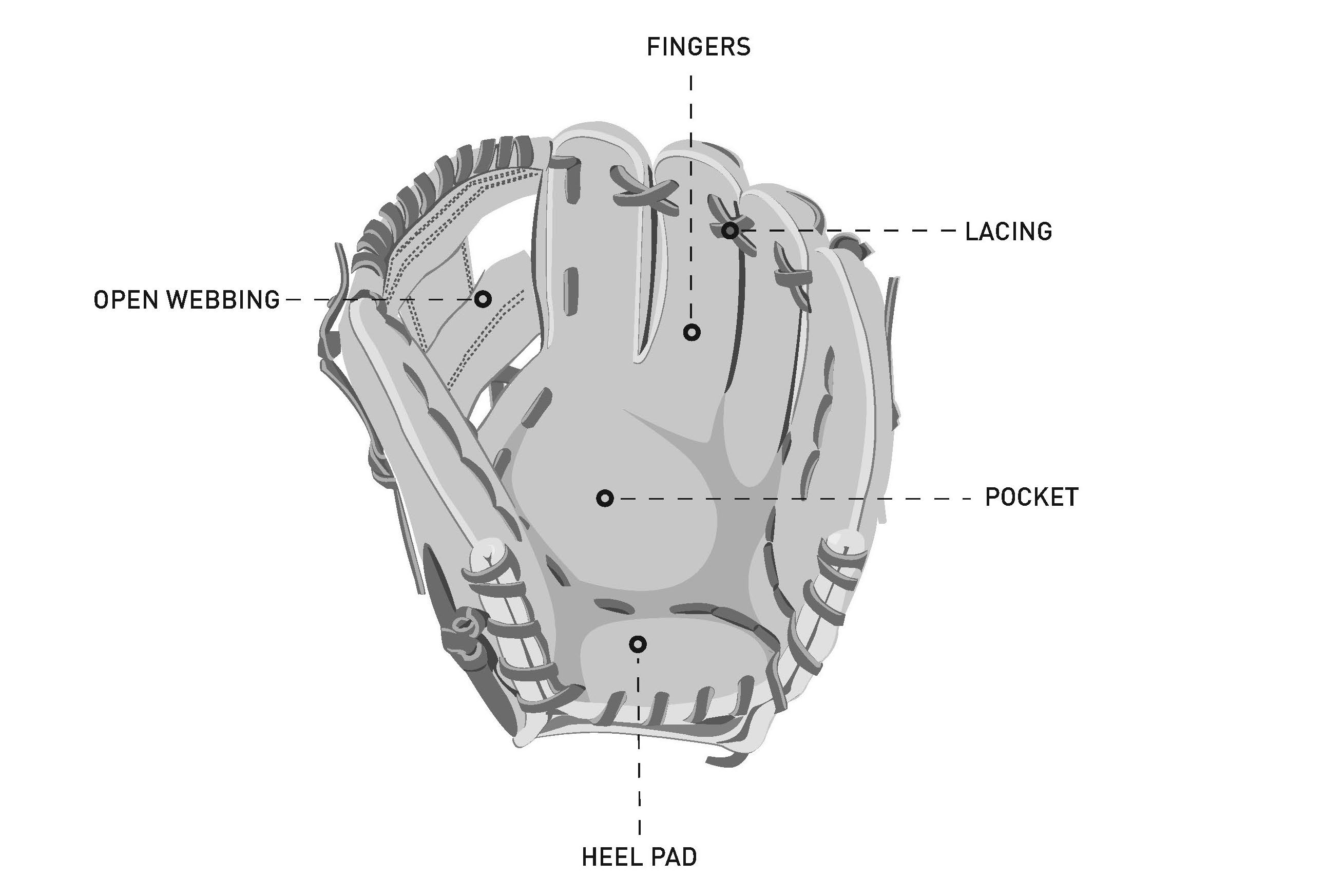 Baseball Glove Structure