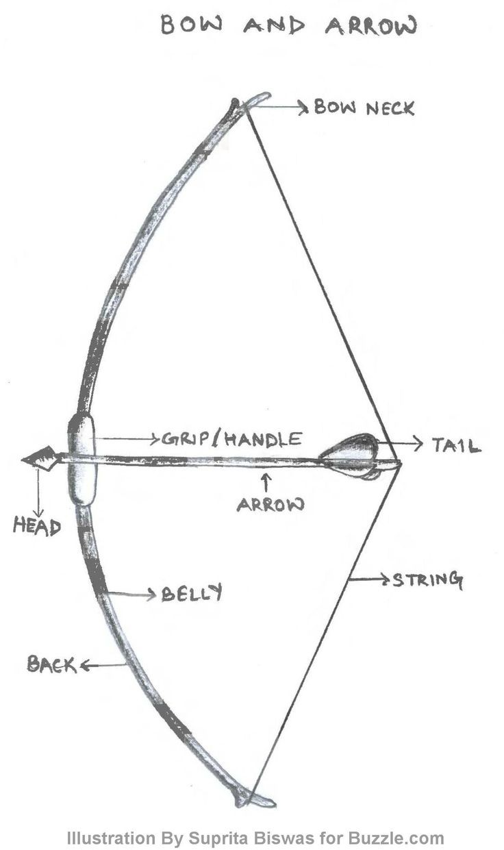 Bow And Arrow Diagram