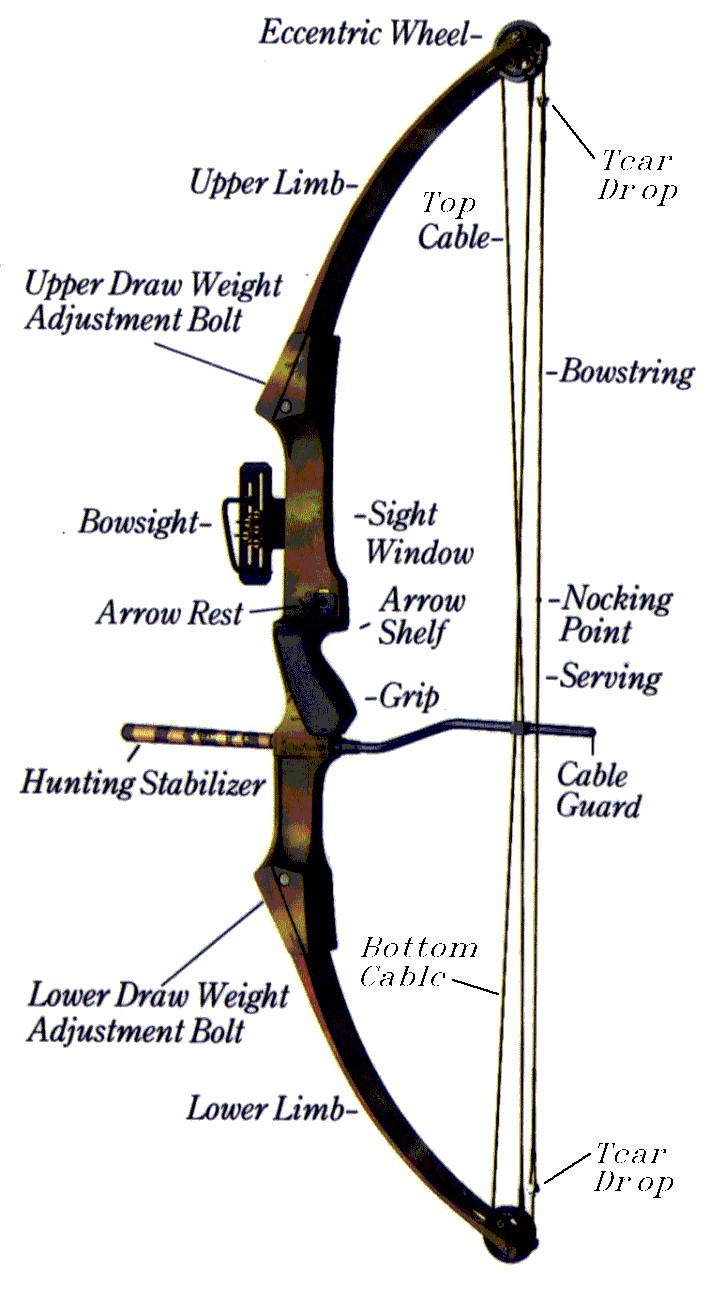 Bow View And Parts Name