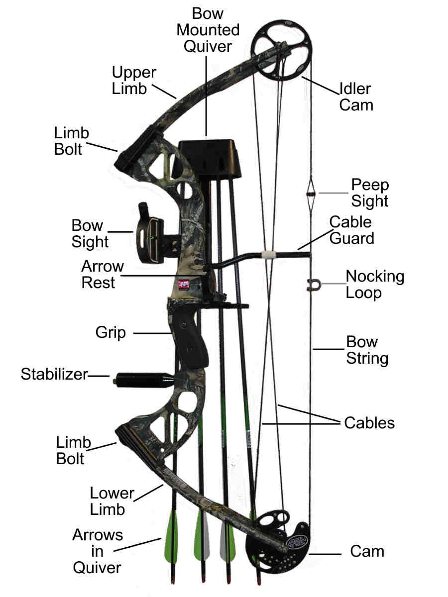 Compound Of Bow Diagram