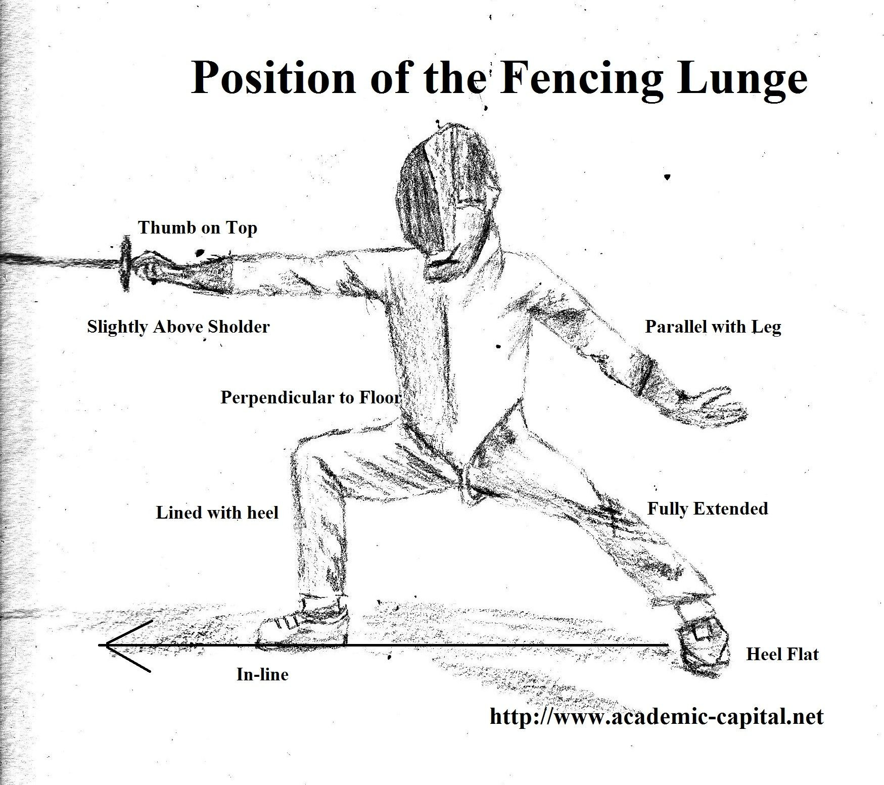 Position Of The Fencing Lunge