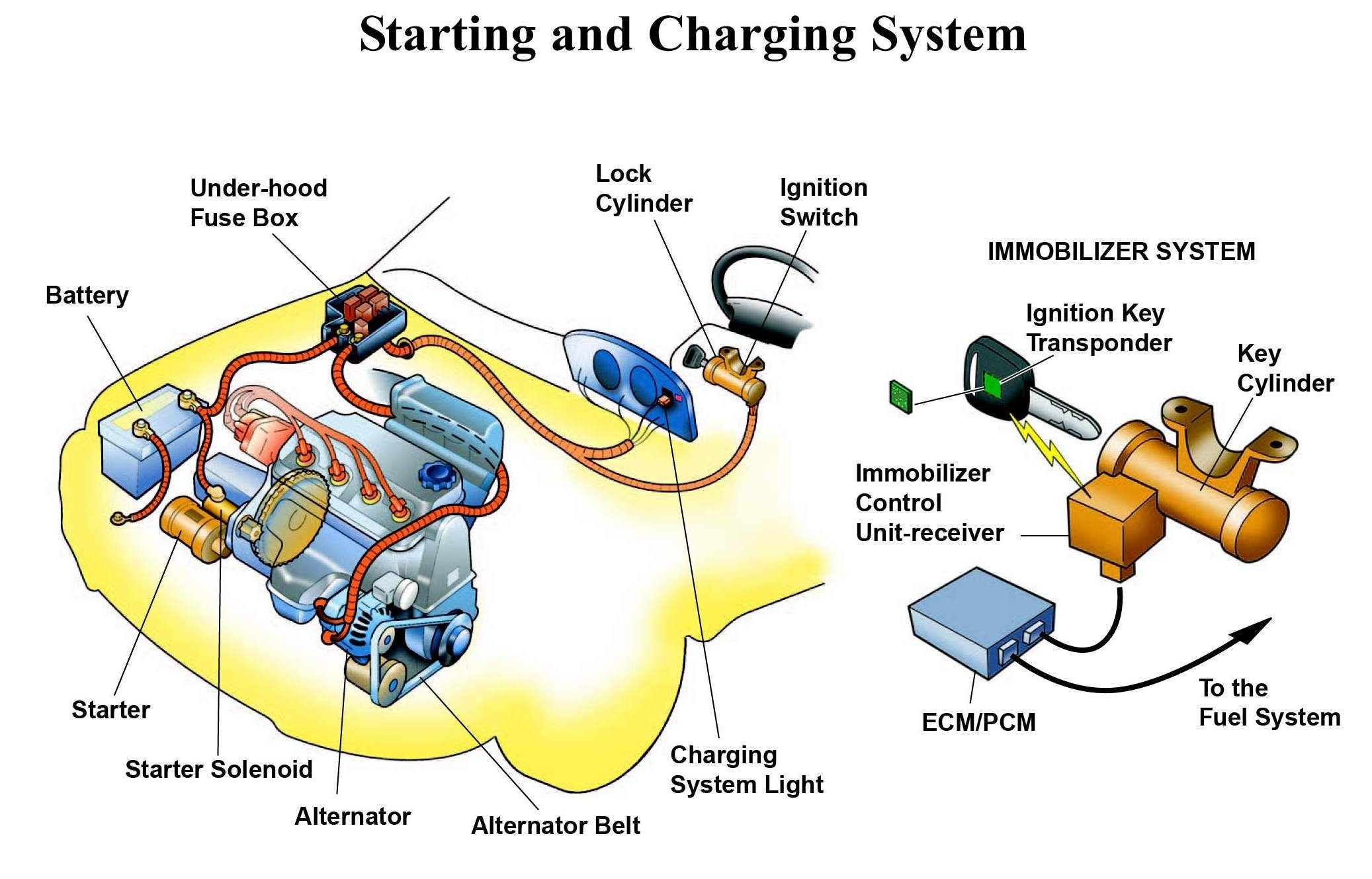 Starting And Charging System Of Automibile