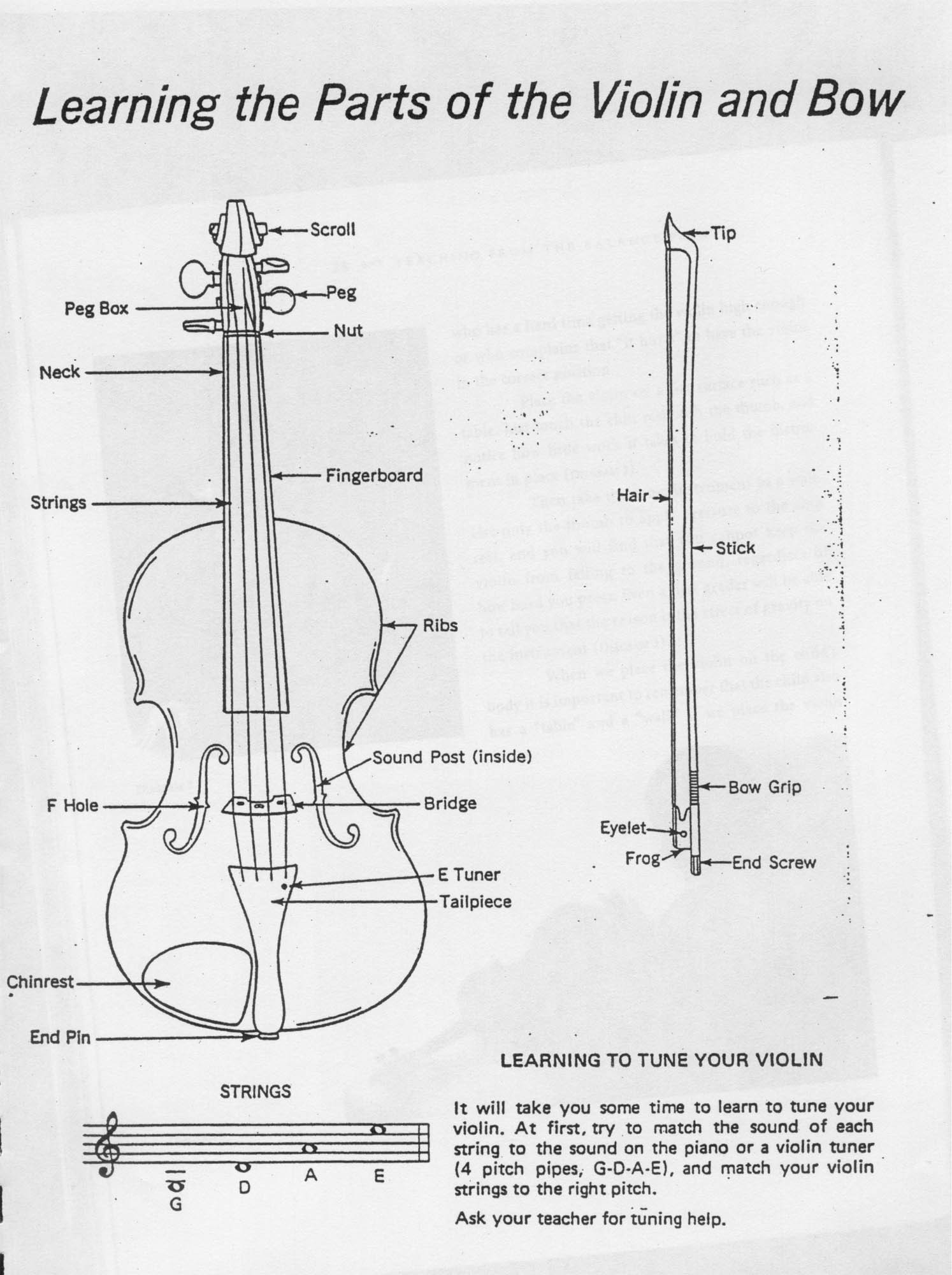 Violin And Bow Structure Diagram