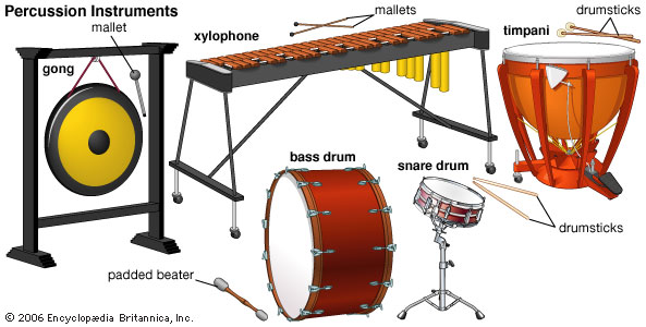 Percussion Instruments Types