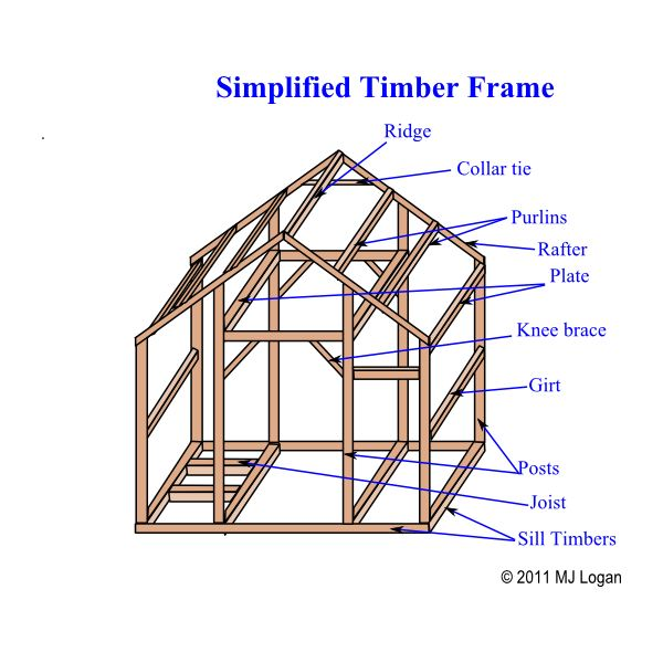 Simplified Timber Frame Anatomical Structure