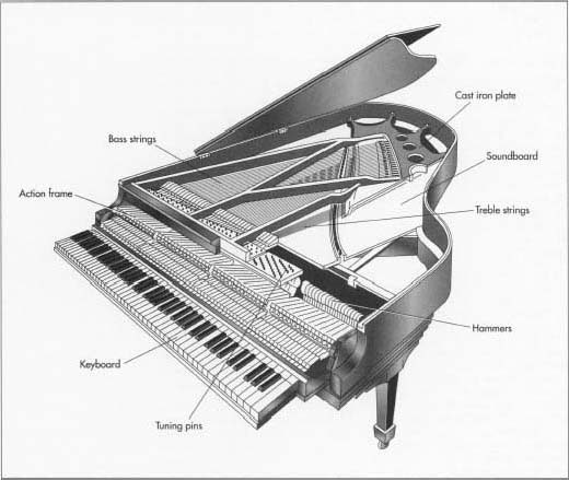 Grand Piano Anatomy