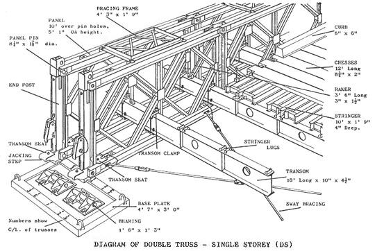 Bridge Anatomical Structure