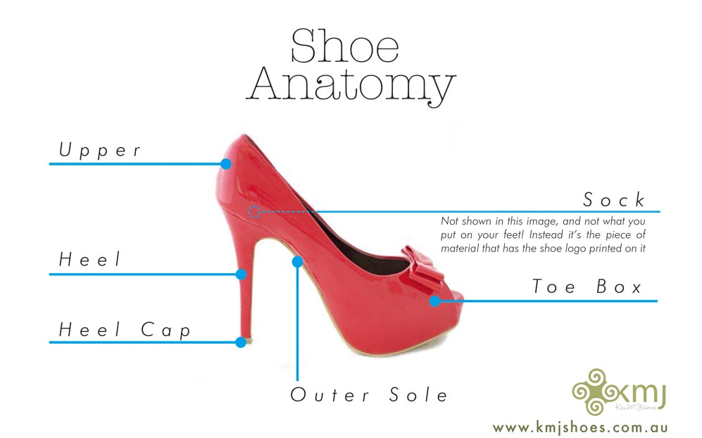 High Heel Shoe Anatomy