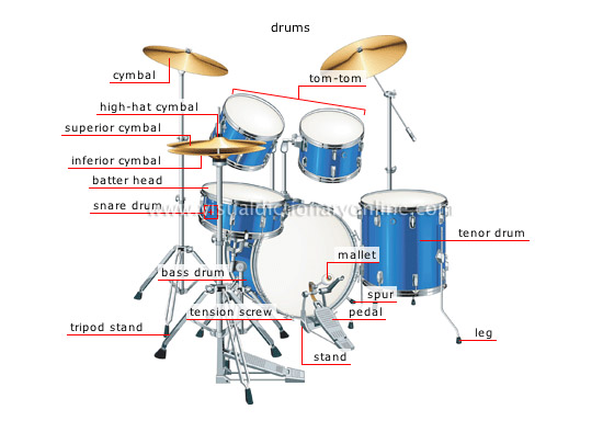 Percussion Instruments Structure