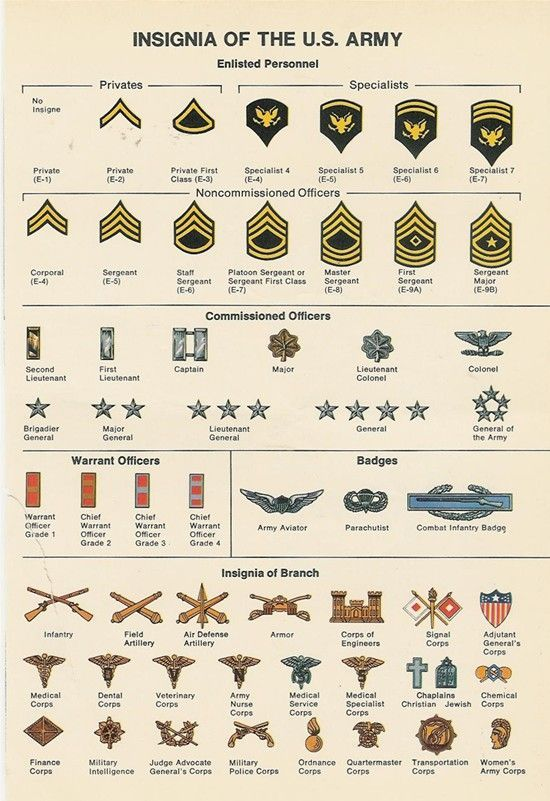 Insignia Of The Us Army Diagram