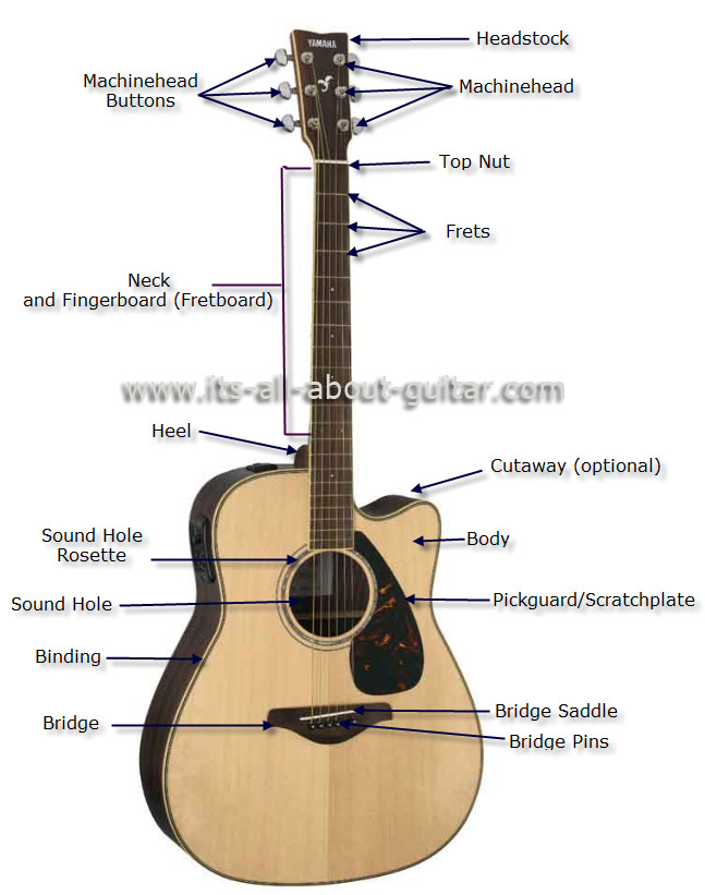 Guitar Structure