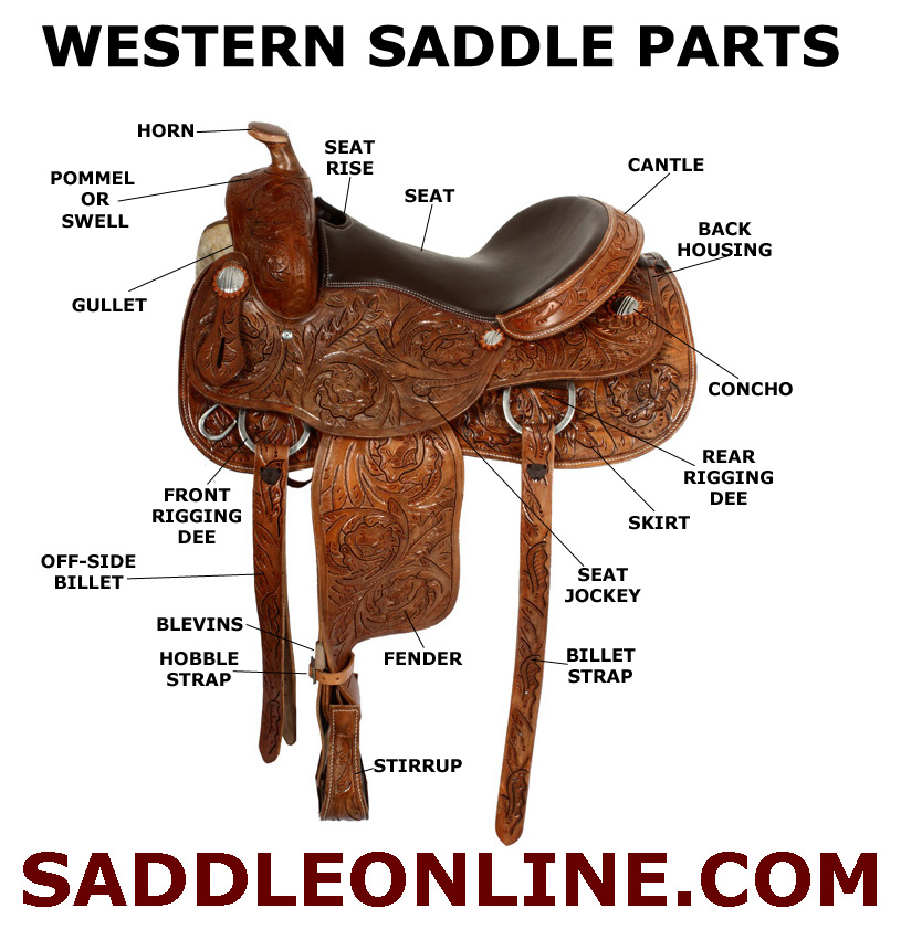 Western Saddle Parts Name