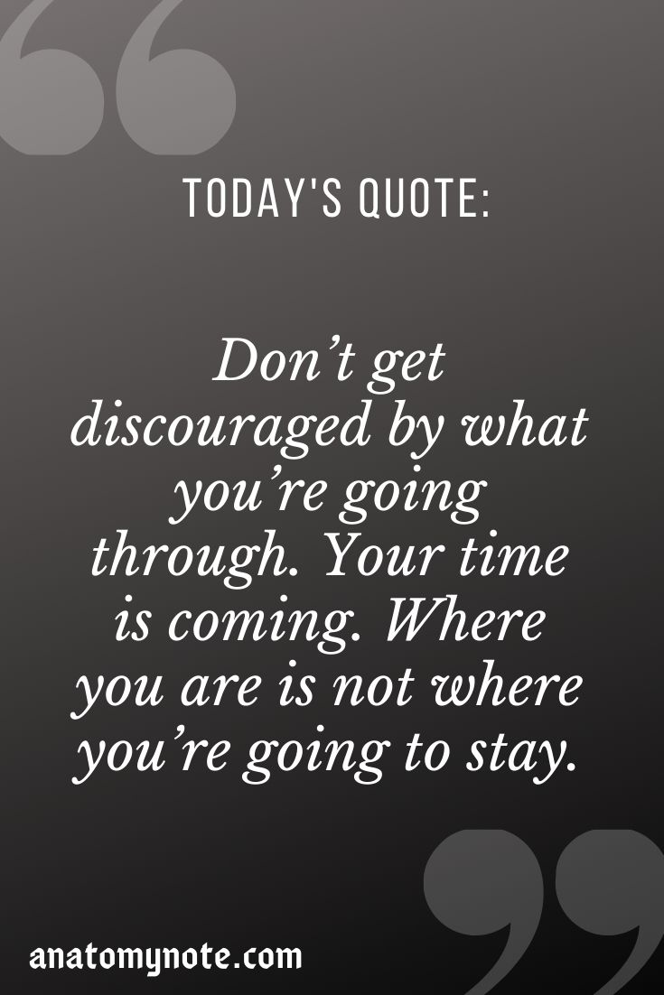 Don't Get Discouraged By What You're Going Through. Your Time Is Coming. Where You Are Is Not Where You're Going To Stay.